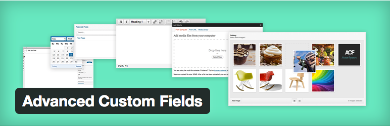 WordPressプラグイン - Advanced Custom Fields | wordpress plugin